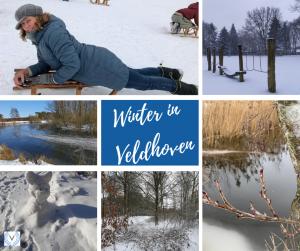 collage van ingezonden winter en sneeuw foto's