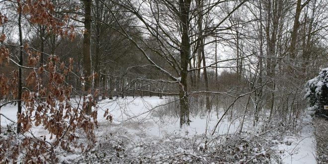 winter sfeerfoto